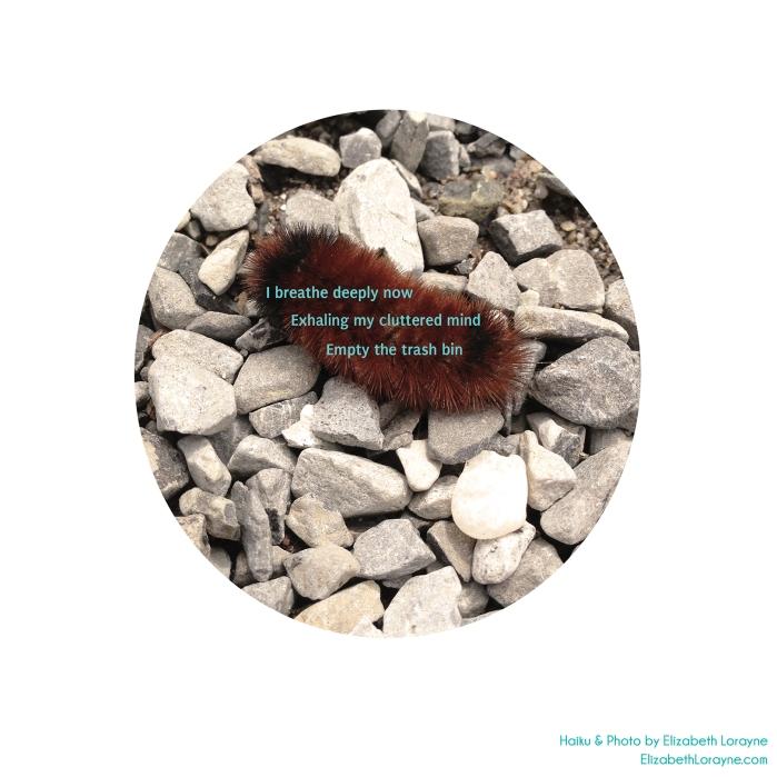 "Elizabeth Lorayne Haiku & Art: ""Healthy Chore"" + Caterpillar"