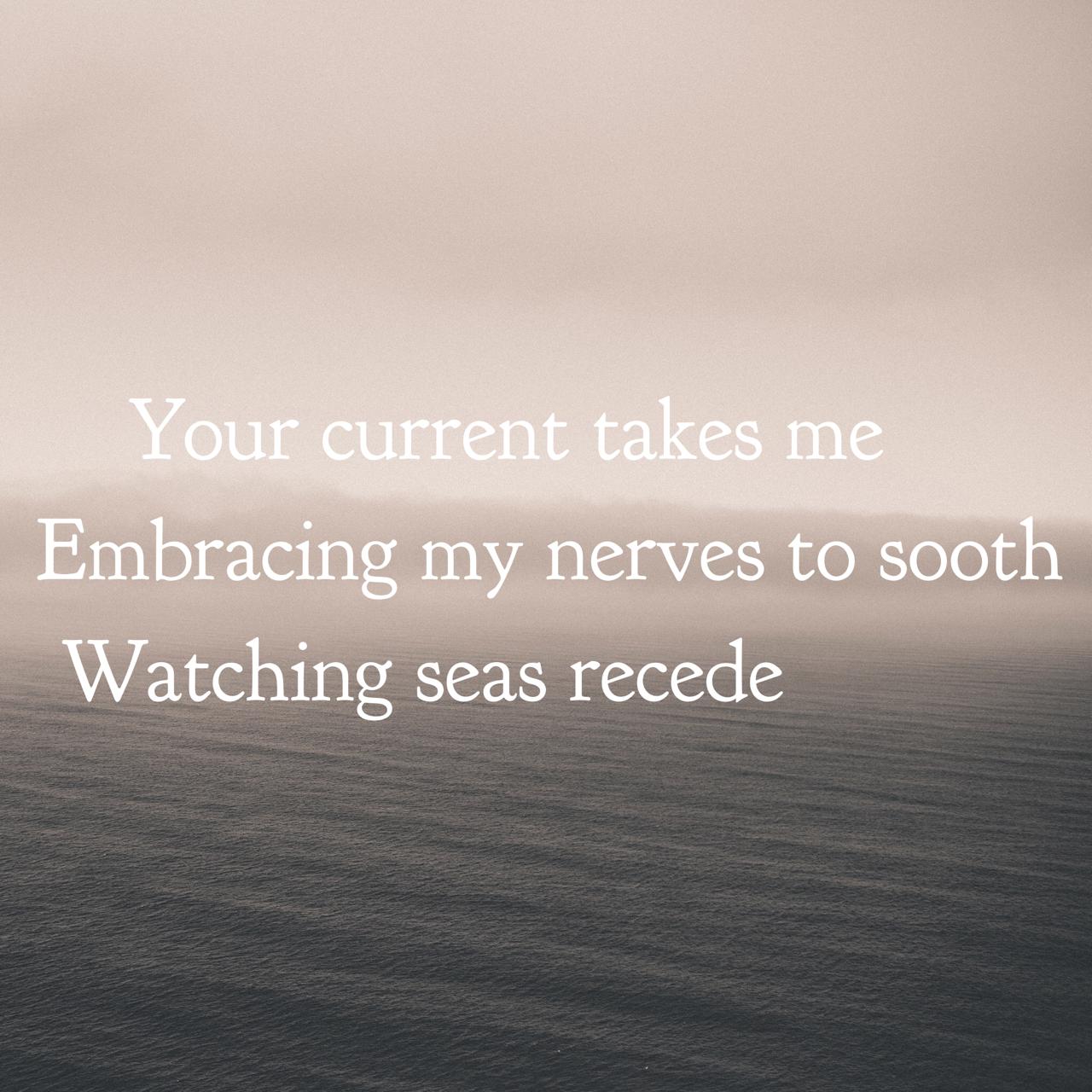 Haiku_Elizabeth_Lorayne_Ocean_Lure.png